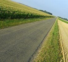 Straight country road by Sami Sarkis