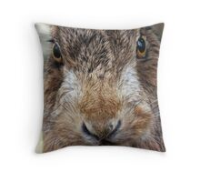Mad as a March Hare Throw Pillow
