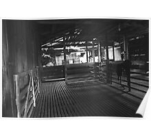 Black River shearing shed Poster