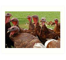 """Hey I Hear Thanksgiving is Coming Soon!"" Art Print"