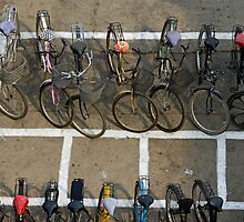 Bicycles parked on street by Sami Sarkis