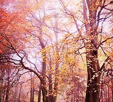 fall colors by Iris Lehnhardt