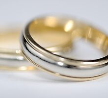 Two wedding rings by Sami Sarkis