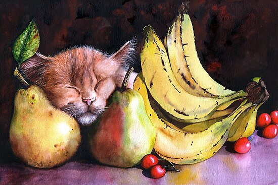 Still Life by Peter Williams