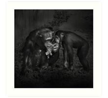Animal Study Art Print