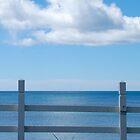 beside the sea - tasmania - iphone/samsung galaxy cover by mellychan