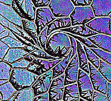 Frosty wire by Liz Joyce