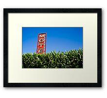 MOTE Framed Print