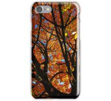iphone Autumn leaves 2 iPhone Case/Skin