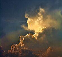 Apocalypse by Carolyn  Fletcher
