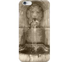 Lions Head Fountain iPhone Case/Skin