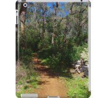 Serpentine Falls National Park iPad Case/Skin
