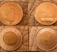 Canadian Dollar Coins by ©The Creative  Minds