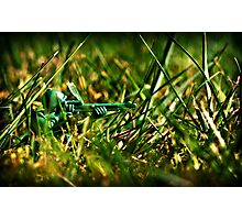 Lone Sniper - Lomo Print Photographic Print