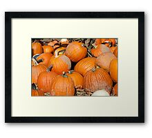 Pumpkins, Pumpkins Everywhere Framed Print