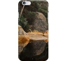 0650 Tidal River Reflections iPhone Case/Skin