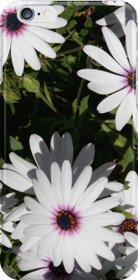 Daisy (iphone case) by Louise Green