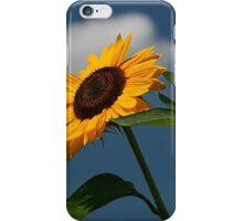 iPhone Case Skyflower iPhone Case/Skin