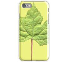 Grape Leaf iPhone Cover iPhone Case/Skin
