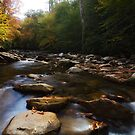 Mountain Creek - Great Smoky Mountains National Park, Tennessee by Matthew Kocin