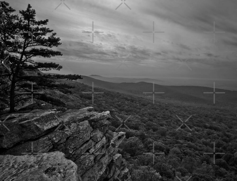 Annapolis Rock by joelleherman