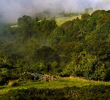 Campsie Morning (1) by Karl Williams