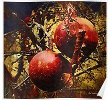 Forbidden Fruit Poster