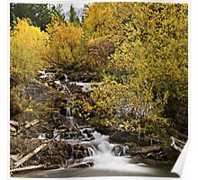 Trees dressed in brilliant fall colors surround a small waterfall Poster