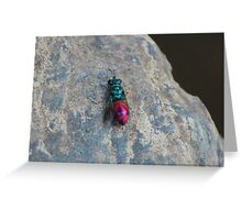 Ruby tailed wasp Greeting Card