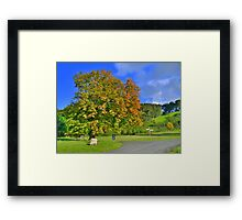 Yorkshire: The Colours of Autumn Framed Print