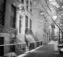 Winter - Upper East Side - New York City by Vivienne Gucwa