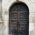 Door of the Alamo by Jerry L. Barrett