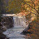 Golden Light on Letchworth Lower Falls by Jill Vadala
