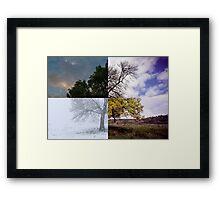 Four Seasons in the Kilpatrick Hills Framed Print