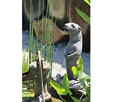 Otter with Waterpump Photographic Print