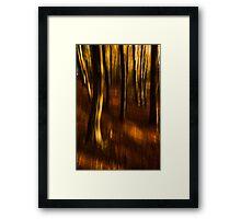 Beech Blur Framed Print