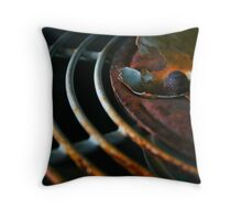Warm and Cool Throw Pillow