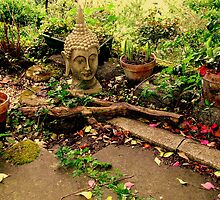 Buddha In The Garden by Rusty  Gladdish