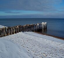 Winter at Whitefish Point by Michael L. Colwell