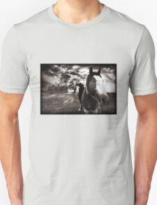 Horses 1 T shirt T-Shirt
