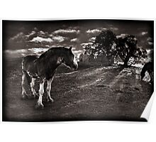 Horses 2 Poster