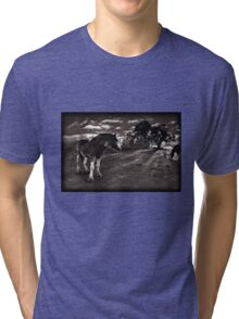 Horses 2 Tshirt Tri-blend T-Shirt