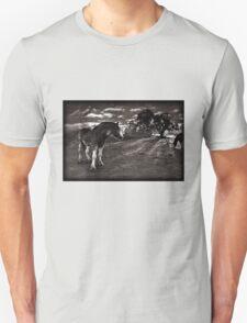 Horses 2 Tshirt T-Shirt