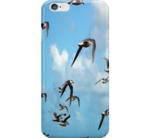 Fight of the Sooty Turns iPhone Case/Skin