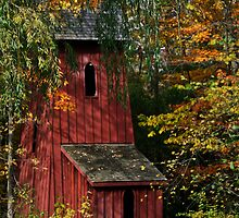 Sheave's Tower In Autumn by jules572