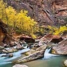 Virgin River by Photonook