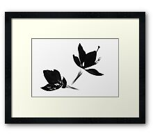 Black|White [Print and iPhone / iPad / iPod Case] Framed Print