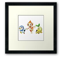 pokemon starter Framed Print