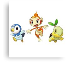 pokemon starter Canvas Print