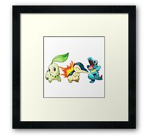 pokemon starter 1 Framed Print